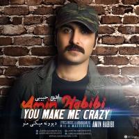 دانلود آهنگ جدید امین حبیبی بنام بغلم کن-Amin Habibi Baghalam